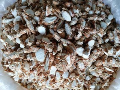 廣西壯族自治區玉林市玉州區干沙姜 沙姜片干度好