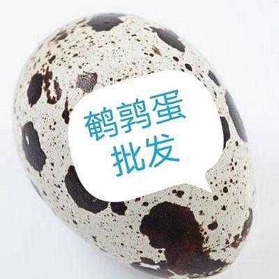 江西省九江市永修县土鹌鹑蛋 食用 箱装