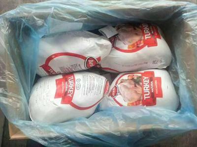 天津濱海新區白條雞 火雞