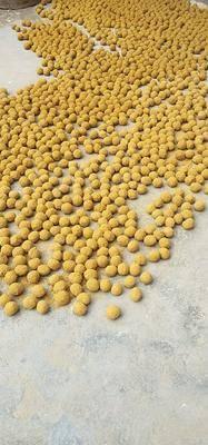 河南省安陽市滑縣 批發五香變蛋!五毛一個!一個也是批發價!