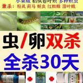 甲维盐 甲维茚虫威虱螨脲杀卵杀虫60斤水吊丝虫菜青虫抗性30天