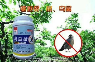 河南省漯河市源匯區自然災害防治 肥料  鳥飛絕
