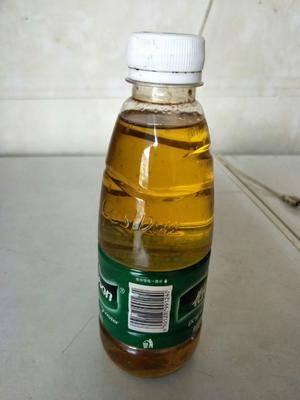 廣西壯族自治區百色市田陽縣有機山茶油