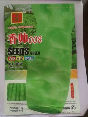 四川省綿陽市涪城區 耐熱萵筍種子