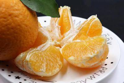四川省成都市蒲江縣青見柑桔 純甜青見柑橘8cm以上5兩以上鮮果,非凍庫果摘果時間5月3日
