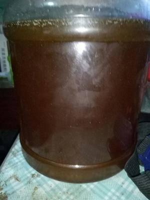 廣西壯族自治區桂林市興安縣野生蜂蜜 塑料瓶裝 1年 100%
