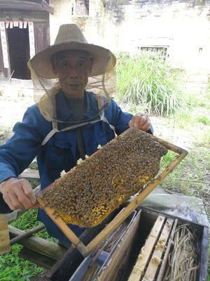 江西省贛州市贛縣土蜂蜜 散裝 2年以上 100%