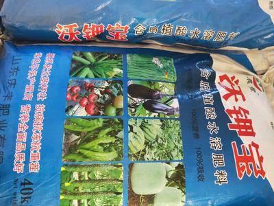 山東省聊城市莘縣 含腐植酸水溶肥料,肥效好。100%吸收!