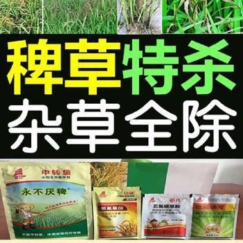 除草剂 稻田杂草全杀1套1亩水稻旱稻稗草特除所有抗性顽固杂草