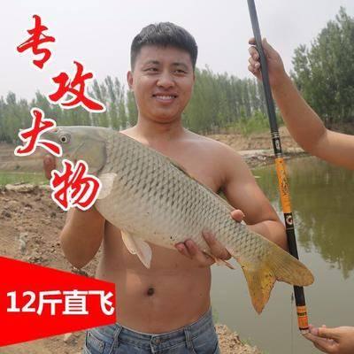 河北省滄州市東光縣 馴漁者釣魚竿手竿正品19調高碳素超輕超硬5H大物竿青