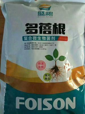 河南省漯河市郾城區土壤調理劑 多蓓根:強力抗重茌生根快,抗根部病害,根系發達莖稈強壯葉濃綠