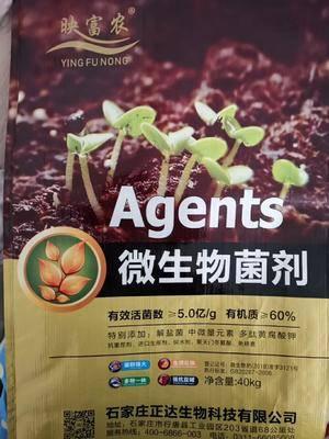 河北省石家莊市行唐縣生物菌肥發酵劑 微生物菌劑
