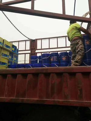 河南省鄭州市金水區甲殼素肥品先沖施肥桶裝 桶肥