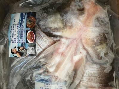 山東省德州市德城區龍頭魚干 千島湖,千島湖魚頭,各種規格,歡迎選購