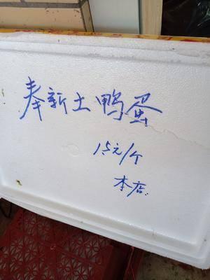 江西省九江市修水縣 新鮮土鴨蛋