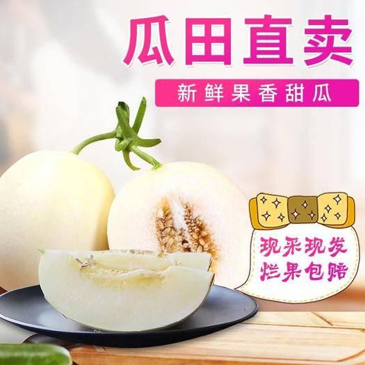 陜西省渭南市臨渭區 閻良甜瓜  哈密瓜  不甜包賠  一件代發  批零均可