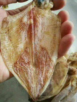 廣西壯族自治區柳州市城中區 魷魚干