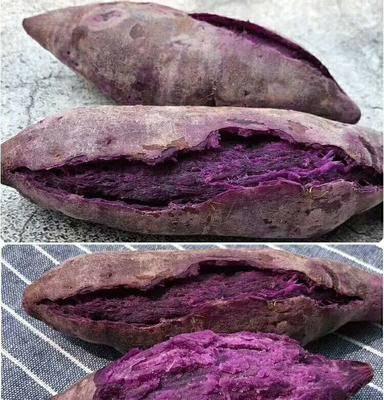 廣西壯族自治區南寧市興寧區 巴馬紫薯,粉糯香甜營養豐富,好吃便宜,5斤23.9元包郵