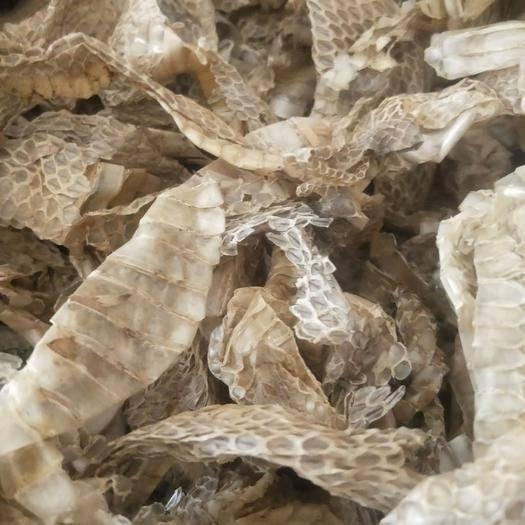 河北省保定市安國市蛇蛻 產地貨源 平價直銷 袋裝