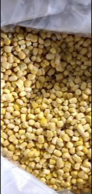 河南省商丘市夏邑縣速凍玉米粒 優質超甜水果玉米粒