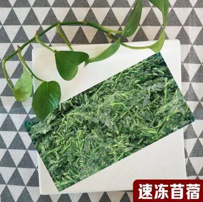 河北省滄州市運河區速凍苜蓿芽 速凍苜蓿,養生長壽菜,全國常年供應