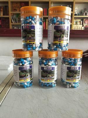 吉林省長春市雙陽區阿膠片 鹿鞭膠囊200粒裝,鹿場直供