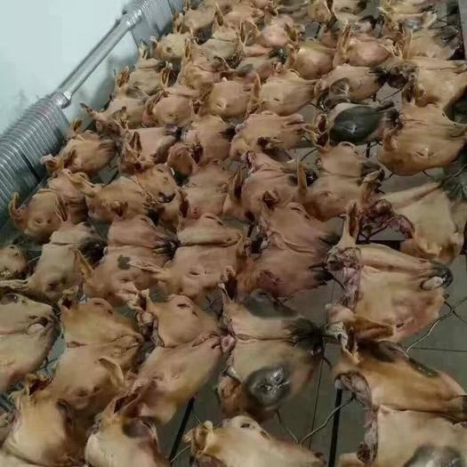 內蒙古自治區錫林郭勒盟錫林浩特市 【火燎羊頭】錫盟本地的質量保證!全國發貨!