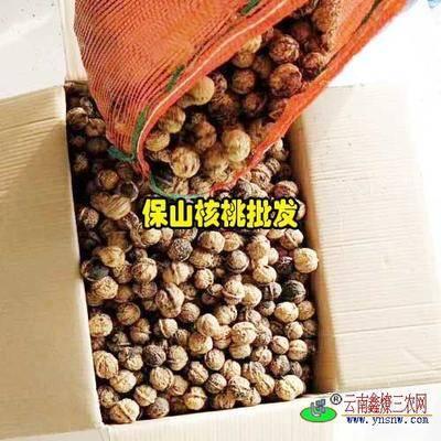 云南省保山市龍陵縣 老品種小麻查核桃