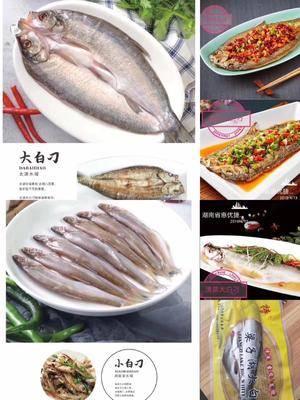 湖南省長沙市雨花區凍品海魚 批發特色酒店菜