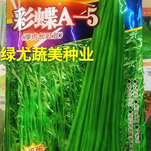 福建省漳州市南靖县油青豆角种子 华赣豇豆自主研发,公认的高端好品种。越夏种植专用,翠绿豇豆