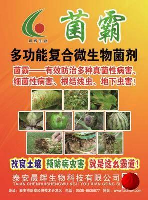 山東省泰安市新泰市經濟作物病蟲害防治 針對真菌性,細菌性自己地下害蟲