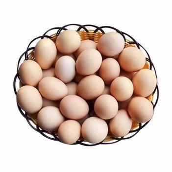 四川涼山 土特產 農村土雞蛋 土雞蛋正宗 健康營養