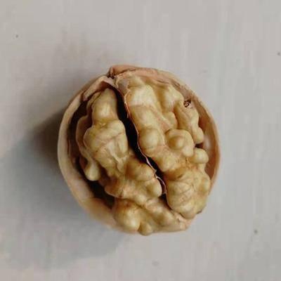 河北省滄州市滄縣 新疆直銷阿克蘇薄皮核桃休閑食品支持一件代發