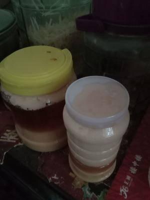 河南省南陽市桐柏縣意蜂蜂蜜 塑料瓶裝 2年 100%