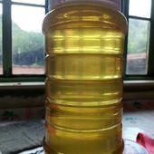 洋槐蜂蜜 塑料瓶裝 2年以上 100%