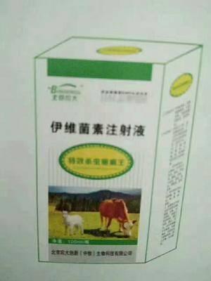 云南省昆明市安寧市動物疫病防治