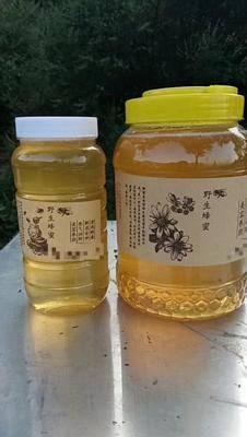 山東省濟南市長清區意蜂蜂蜜 塑料瓶裝 2年以上 100%