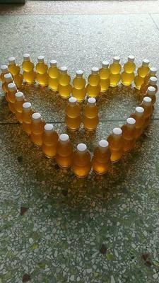 廣西壯族自治區河池市南丹縣 土蜂蜜 上等荔枝蜜 蜂場直供 拒絕廉價假蜂蜜