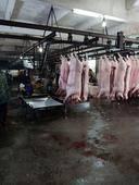 猪副产品白条