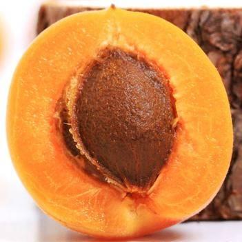 黃杏 果園直發  現摘現發 5斤全國包郵