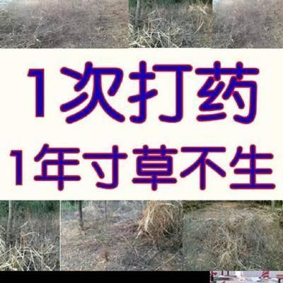 安徽省合肥市肥東縣除草劑 一年寸草不生甲嘧磺隆,非耕地除草除樹除雜灌