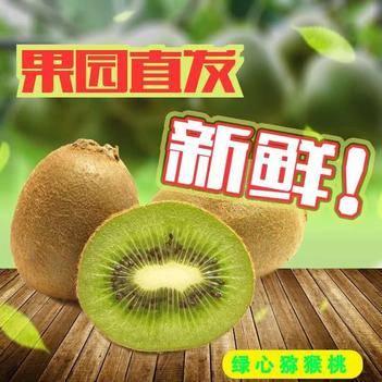 绿心猕猴桃  产地直发 一件代发