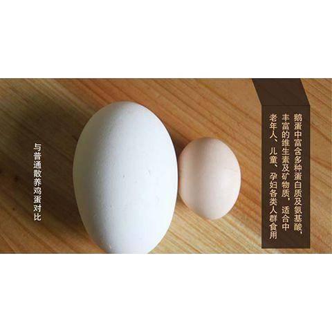 河北省保定市博野縣 6枚新品促銷新鮮鵝蛋90至115g農家散養孕婦去胎毒土鵝蛋
