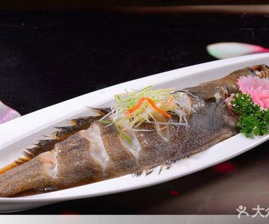 遼寧省大連市甘井子區 比目魚   碟魚