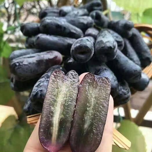广东省广州市白云区金手指葡萄 澳洲美人提金手指,皮薄肉厚果肉脆甜,无籽,安全健康,0售后