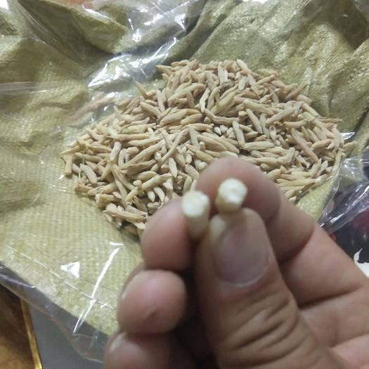 山东省菏泽市曹县 精选麦冬大量上市,粒粒手选。质量保证。