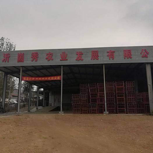 山東省臨沂市蒙陰縣恒溫恒濕庫租賃 電商平臺供應鏈供貨