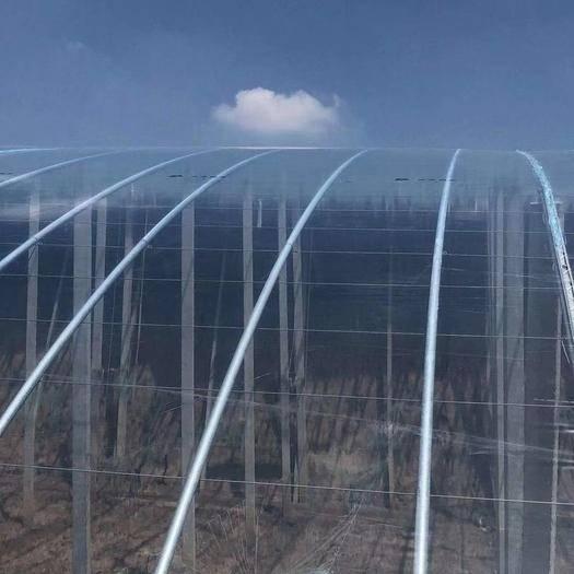 天津市靜海區 棚膜 塑料膜 PO膜 保溫膜