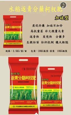 河北省邯鄲市廣平縣硅肥 水稻返青分蘗柯杈肥,水稻,返青肥,分蘗
