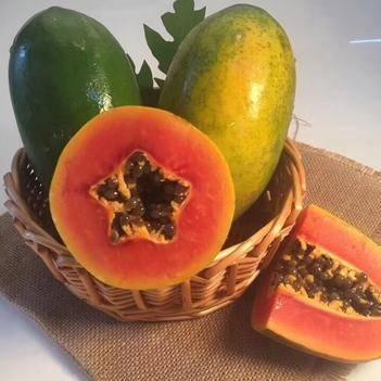 海南红心木瓜8斤9斤青皮新鲜水果现摘现发一件代发